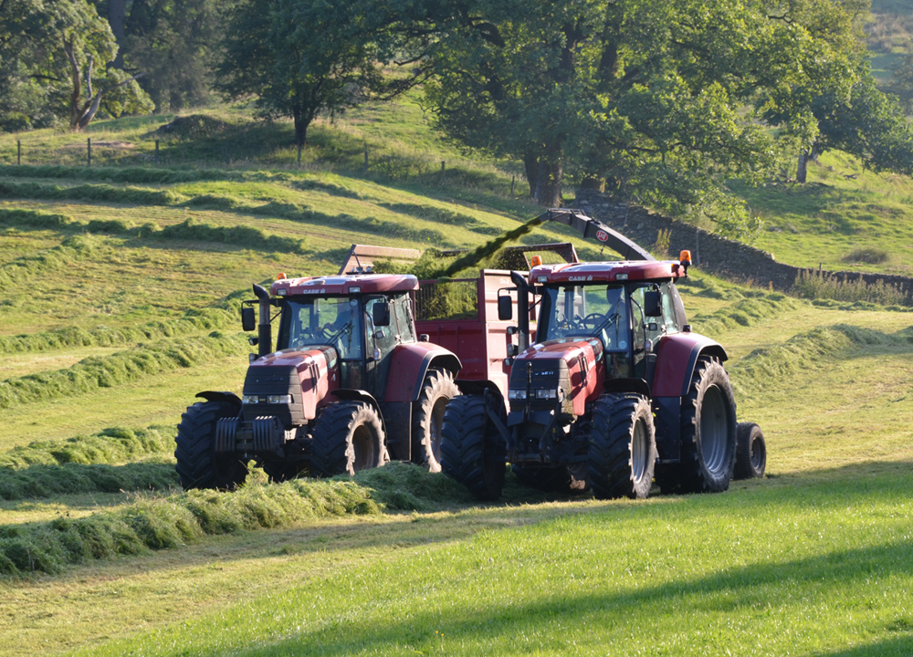 Matson Ground - silaging